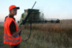 Jagd im August – Wildschadensbekämpfung auf Feldflächen durch sichere Jagd