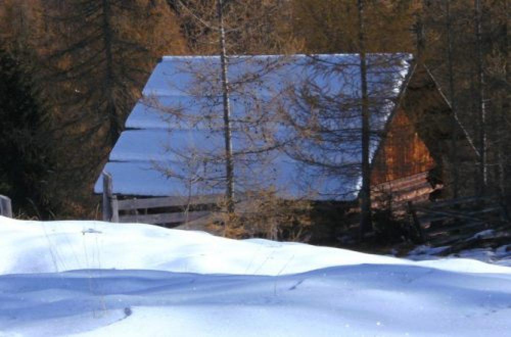 Der Kauf einer Jagdhütte – Sichere Investition in unsicheren Zeiten