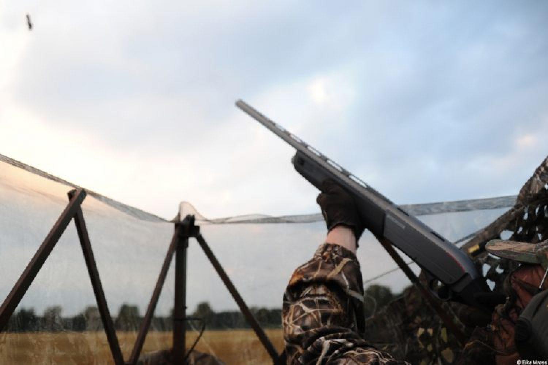 Jagdbericht: Auf Krähenjagd Ende August