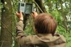 Wildkamera Minox DTC 600 im Test