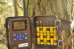 Wildkamera Dörr Snapshot Mobil 5.1 camouflage im Test