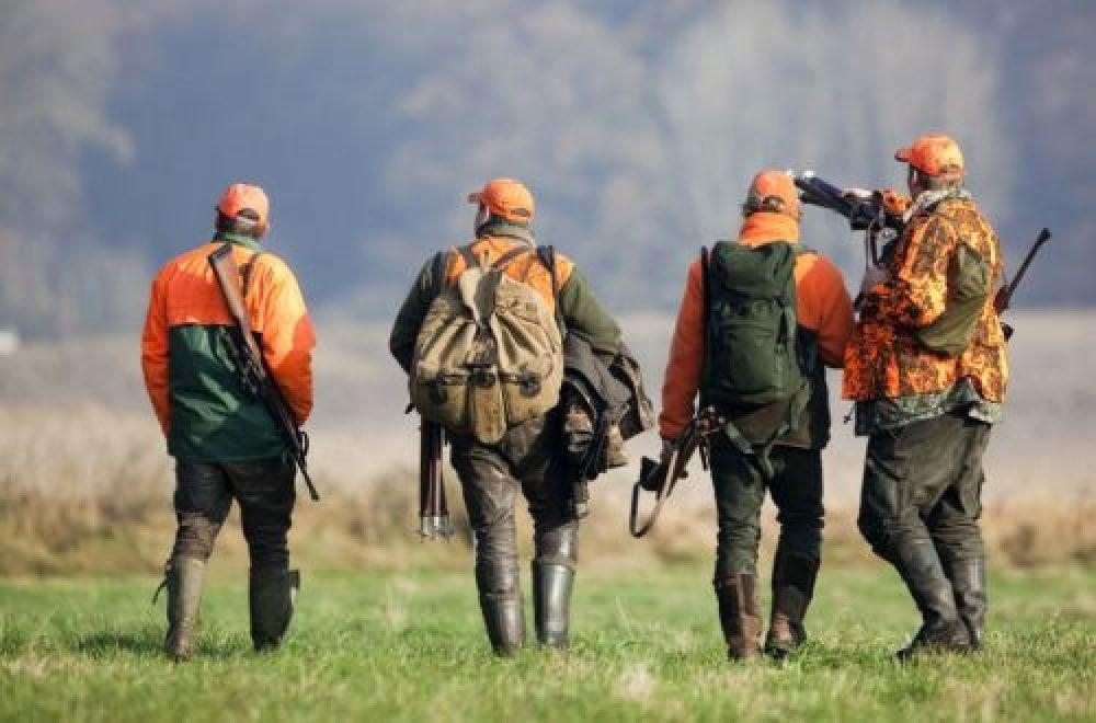 Signale setzen auf der Treib- und Drückjagd – Orange ist die Farbe für die Jagd im Herbst