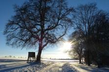 hochsitz-im-revier-im-winter