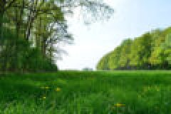 Frühjahrsputz im Revier – Part I