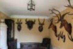Jagdtrophäen – Einfuhr von Jagdtrophäen aus dem Ausland