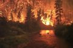 Waldbrandgefahr – Ein Funke bis zur Katastrophe