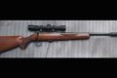 Schalldämpfer auf der Jagd – Pro und Contra