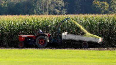 Landwirte und Jäger müssen den Erntetermin und die Ernteorte abstimmen