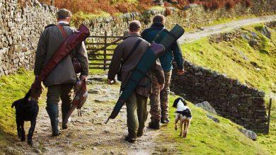 Jagd mit Hund – Tierhalterhaftpflichtversicherung
