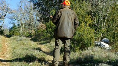 Für den Jäger sollte im Schadensfall eine Jagdhaftpflichtversicherung greifen