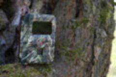 Wildkameratest: Seissiger SPROMISE S108