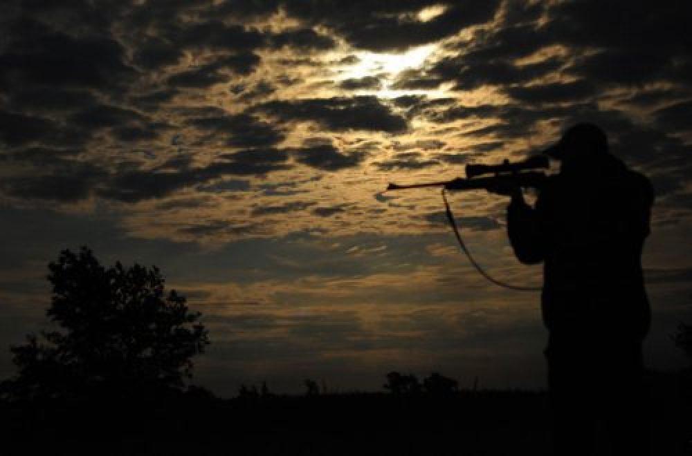 Auf Mondjagd – Schwarzwild an der Kirrung