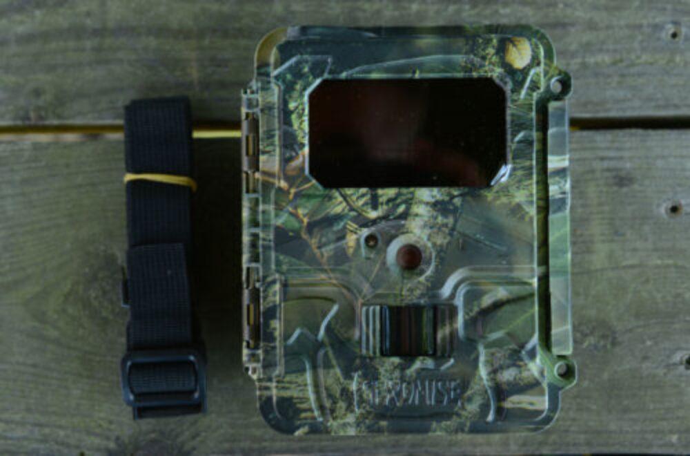 Wildkamera im Reviereinsatz: die SPROMISE S108 von Seissiger