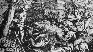 Niederlaendischer Stich: Saujagd mit Jagdhunden
