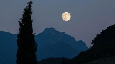 Volles Mondlicht für die Jagd