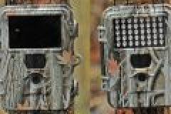 10 wertvolle Tipps für den Kauf von Wildkameras